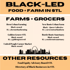 graphic promoting black-led food and farm organizations