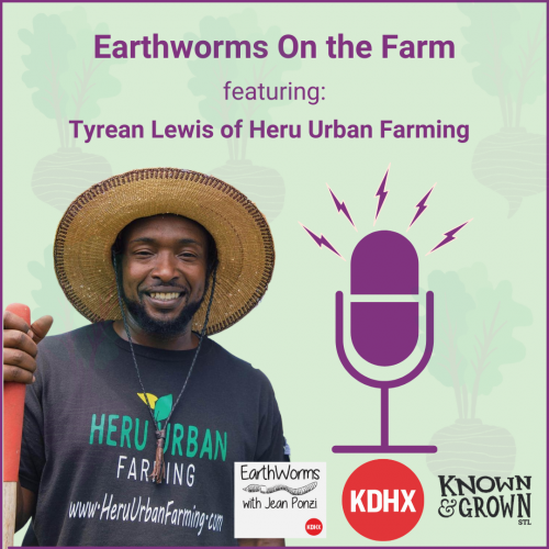 Promotion for an Earthworms On the Farm podcast